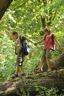 ECO adventure land activities at camp davern