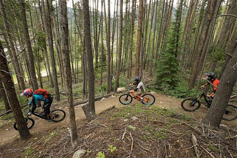 camp davern mountain biking