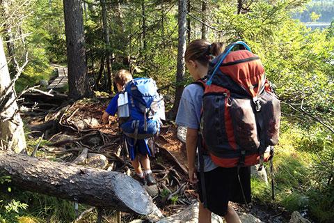 camp davern trail blazing